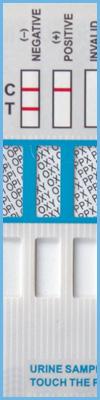 Detox Doctor Home Drug Tests