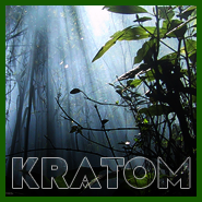 Will Kratom Show Up On Your Next Drug Test?