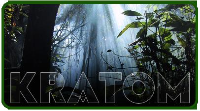 Kratom Is Not Addictive